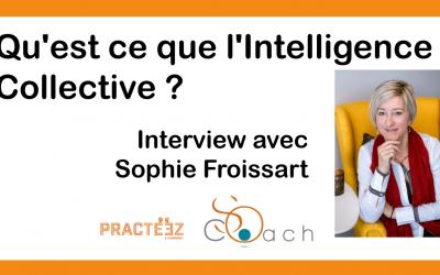 Qu'est-ce que l'Intelligence Collective ? Sophie Froissart